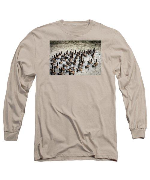 Geese In Sunset Light Long Sleeve T-Shirt by Menachem Ganon