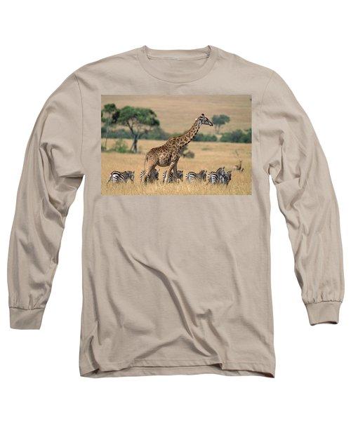Giraffe Giraffa Camelopardalis Long Sleeve T-Shirt