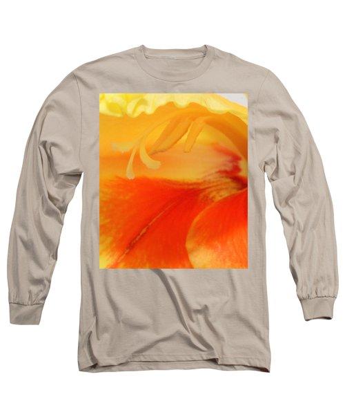 Gladiola Hello Long Sleeve T-Shirt by Deborah  Crew-Johnson