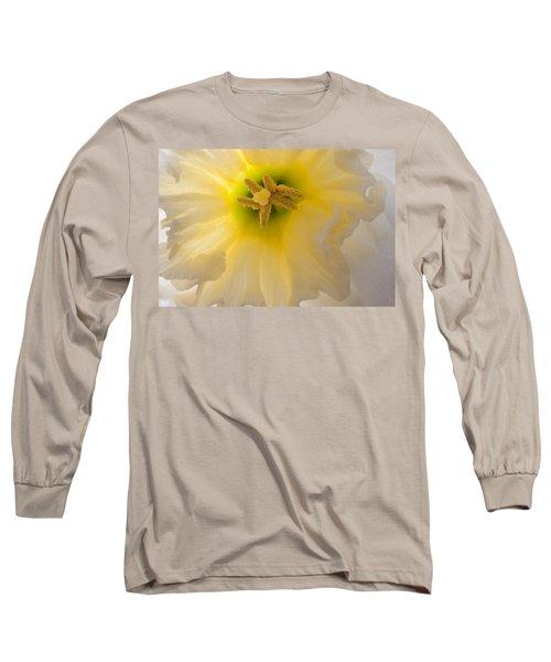 Glowing Daffodil Long Sleeve T-Shirt