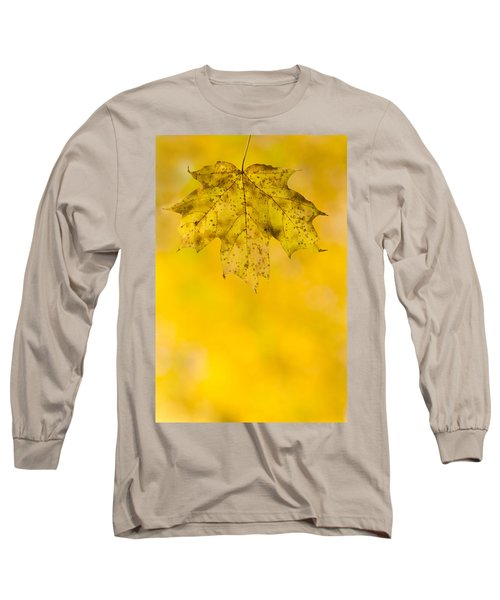 Long Sleeve T-Shirt featuring the photograph Golden Autumn by Sebastian Musial
