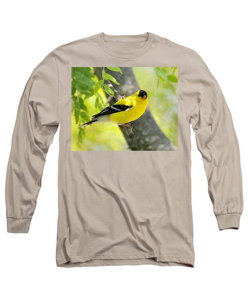 Goldfinch 299 Long Sleeve T-Shirt