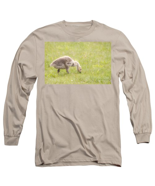 Long Sleeve T-Shirt featuring the photograph Gosling by Jeannette Hunt
