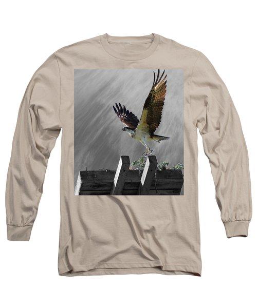 Grand Ole Osprey Long Sleeve T-Shirt by Davandra Cribbie