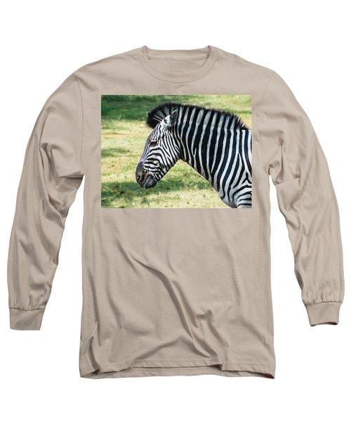 Grazing Zebra Long Sleeve T-Shirt