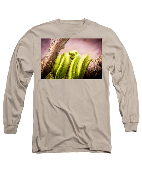 Green Tree Python Long Sleeve T-Shirt by Pati Photography
