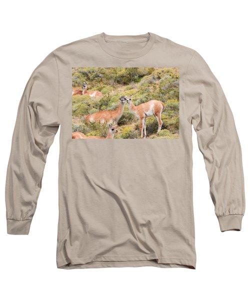 Guanaco Long Sleeve T-Shirt