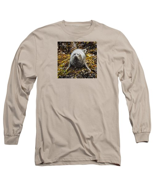 Harbor Seal Long Sleeve T-Shirt by Alice Cahill