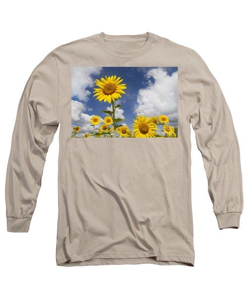 Sunflower Day Long Sleeve T-Shirt