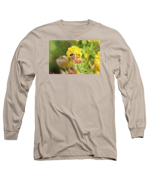 Honeybee On Hop Clover Long Sleeve T-Shirt by Lucinda VanVleck