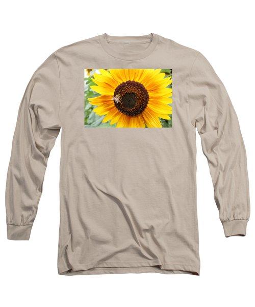 Honeybee On Small Sunflower Long Sleeve T-Shirt
