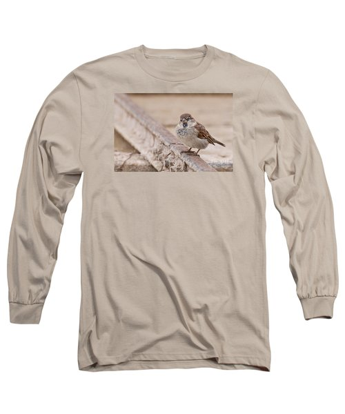 Long Sleeve T-Shirt featuring the photograph House Sparrow by Simona Ghidini