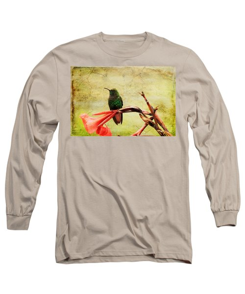 Long Sleeve T-Shirt featuring the photograph Hummingbird 1 by Teresa Zieba