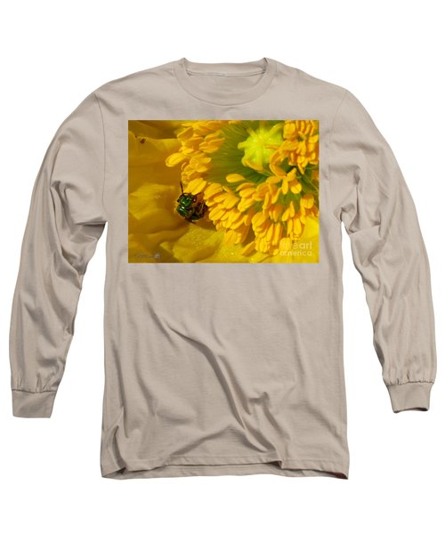 Iceland Poppy Pollination Long Sleeve T-Shirt by J McCombie