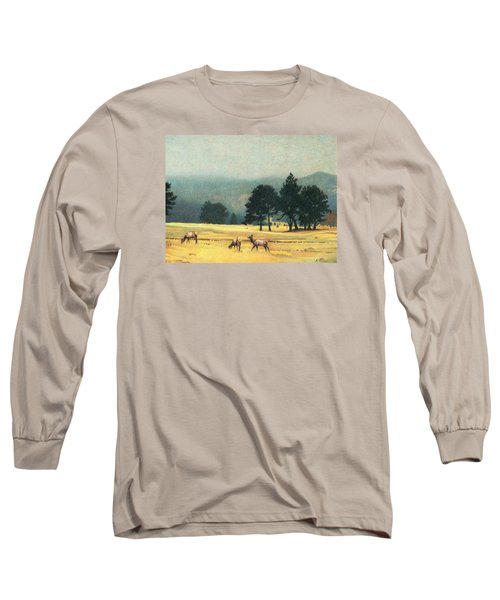 Impression Evergreen Colorado Long Sleeve T-Shirt by Dan Miller