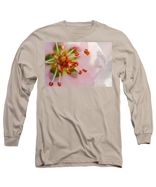 In A Pink Cloud Long Sleeve T-Shirt