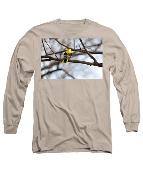 Indian Golden Oriole Long Sleeve T-Shirt by Fotosas Photography
