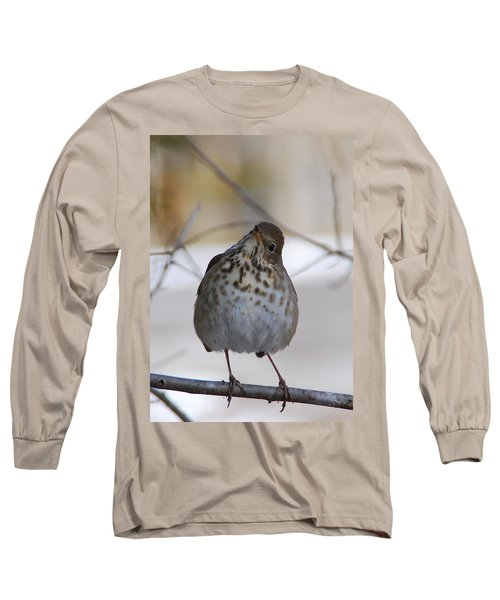 Inquisitive Hermit Thrush Long Sleeve T-Shirt