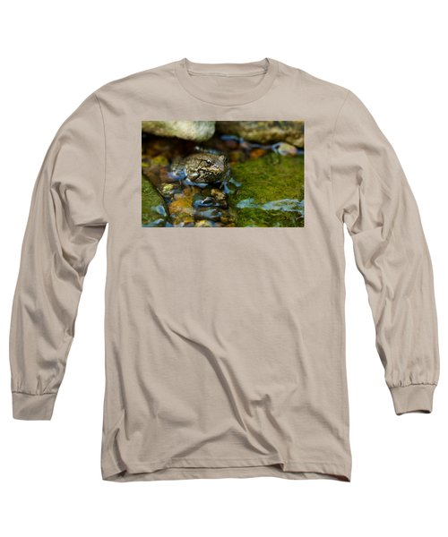 Long Sleeve T-Shirt featuring the photograph Is There A Prince In There? - Frog On Rocks by Jane Eleanor Nicholas