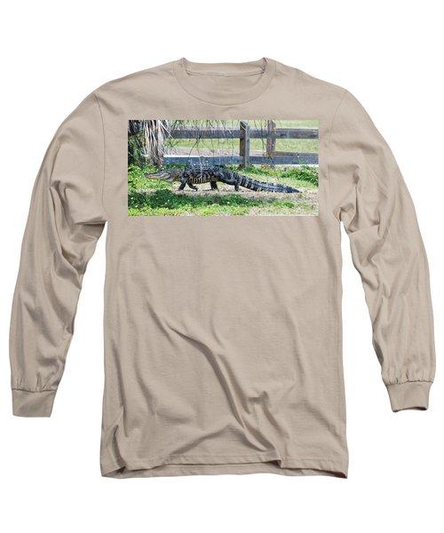 A Stroll Through The Daisies Long Sleeve T-Shirt by Susan Molnar