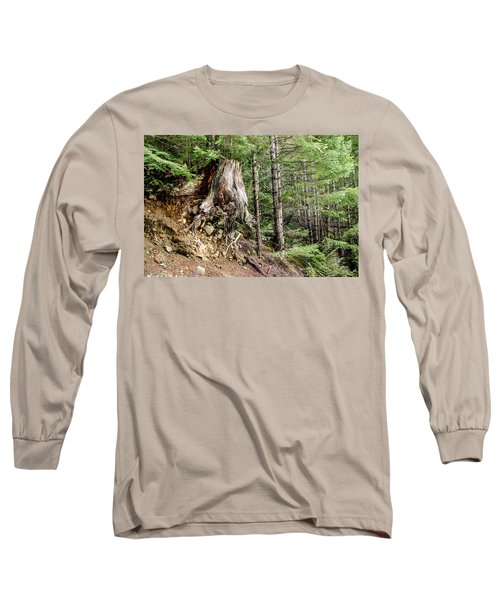 Just Hanging On Old Growth Forest Stump Long Sleeve T-Shirt by Roxy Hurtubise