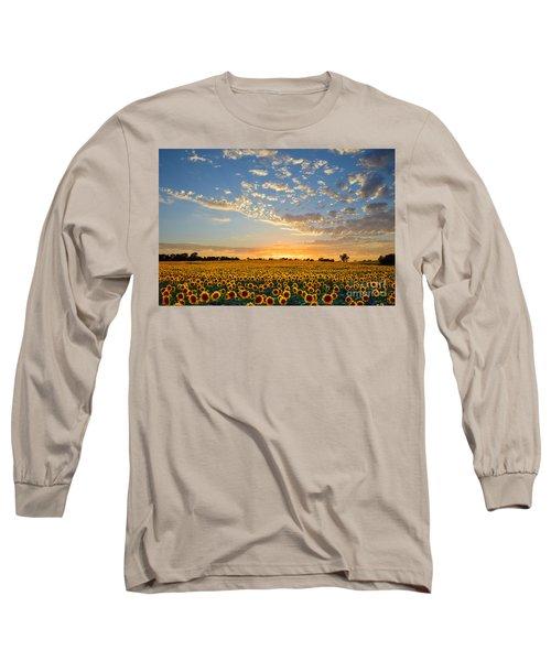 Kansas Sunflowers At Sunset Long Sleeve T-Shirt
