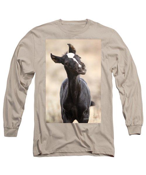 Lansa - A Wild Mustang Colt Long Sleeve T-Shirt