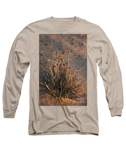 Late Day Color Long Sleeve T-Shirt