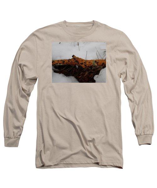 Lichen N'snow Long Sleeve T-Shirt