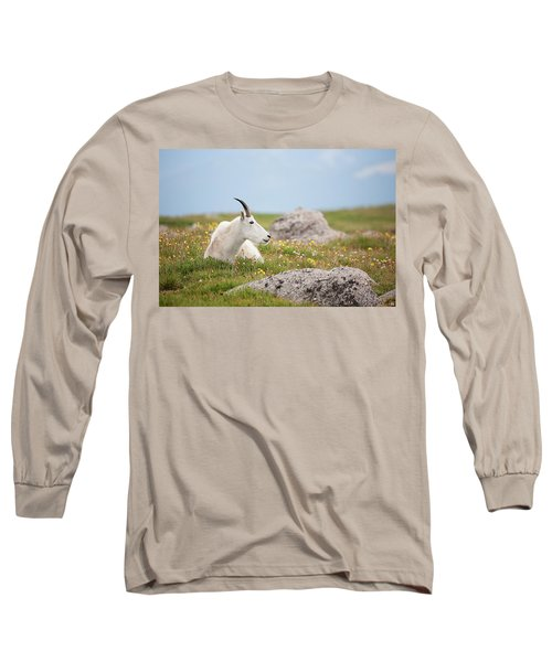 Lie Down In Green Pastures Long Sleeve T-Shirt