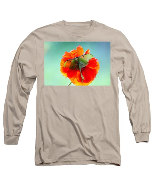 Luna Moth On Poppy Aqua Back Ground Long Sleeve T-Shirt