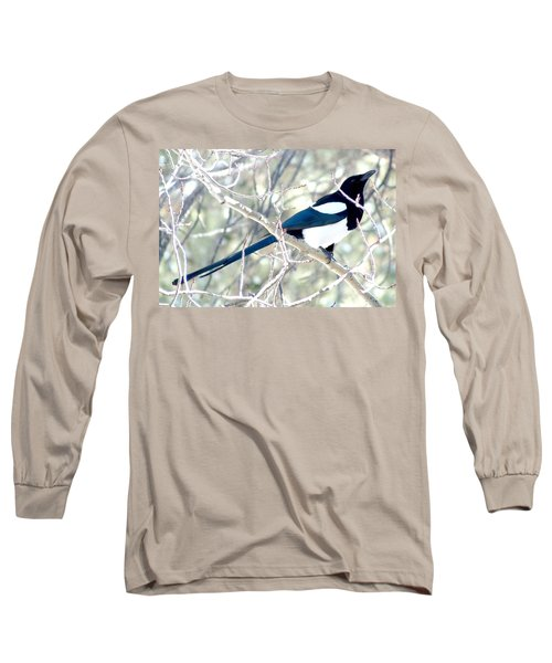 Magpie On Aspen Tree Long Sleeve T-Shirt