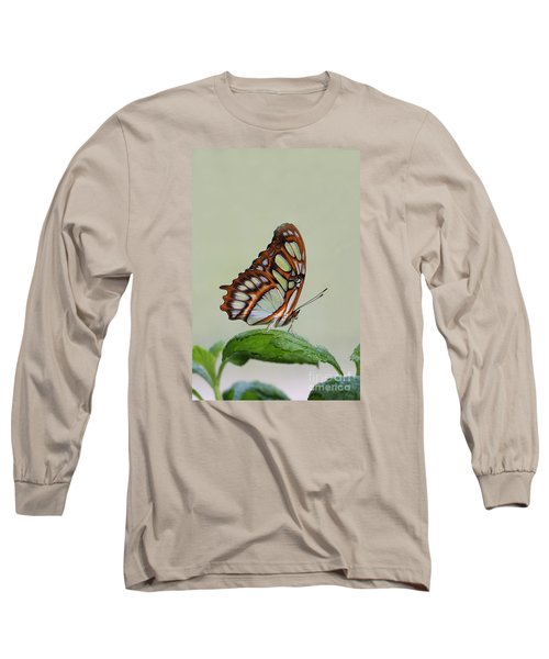 Long Sleeve T-Shirt featuring the photograph Malachite Butterfly #5 by Judy Whitton