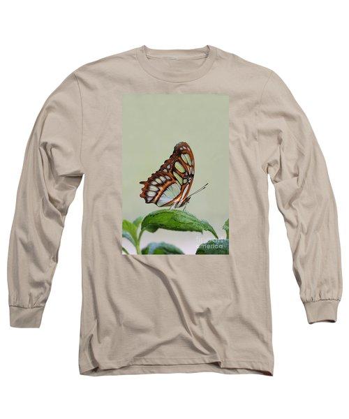 Malachite Butterfly #5 Long Sleeve T-Shirt