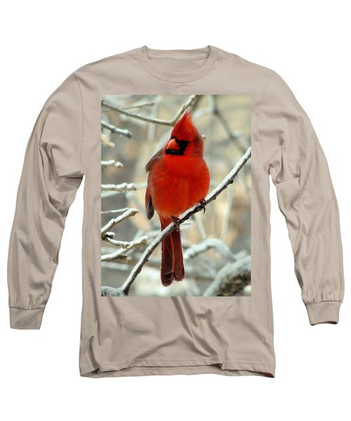 Long Sleeve T-Shirt featuring the photograph Male Cardinal  by Janette Boyd