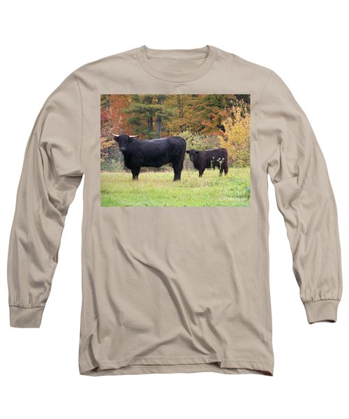 Long Sleeve T-Shirt featuring the photograph Highland Cattle  by Eunice Miller