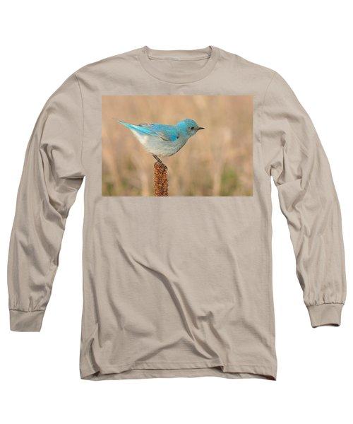 Mountain Bluebird Long Sleeve T-Shirt