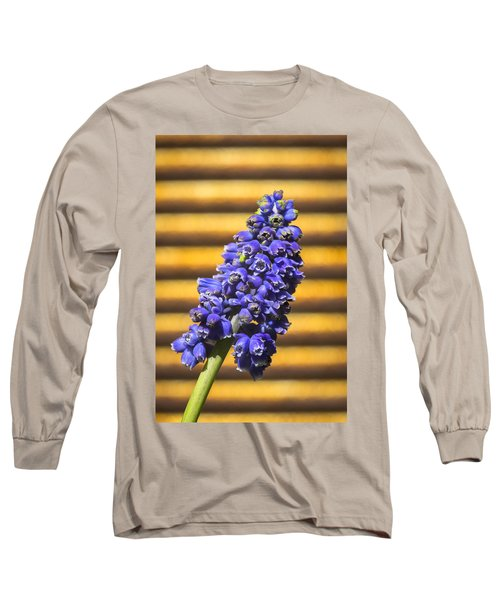 Long Sleeve T-Shirt featuring the photograph Muscari And Rust by Caitlyn  Grasso