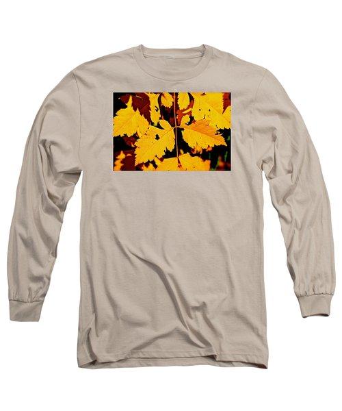 Nature's Designworks Long Sleeve T-Shirt by Ira Shander