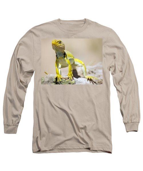 New Photographic Art Print For Sale Yellow Lizard Ghost Ranch New Mexico Long Sleeve T-Shirt
