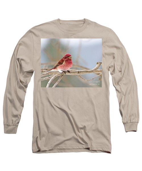 Northern Pretty Long Sleeve T-Shirt