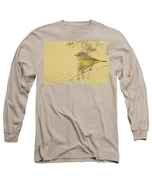 Orange Crowned Warbler Long Sleeve T-Shirt by Bryan Keil
