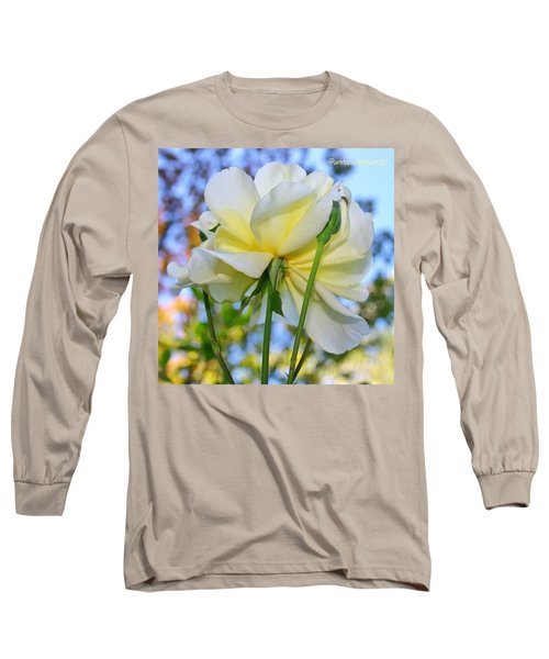 Pale Yellow Rose And Blue Sky Long Sleeve T-Shirt