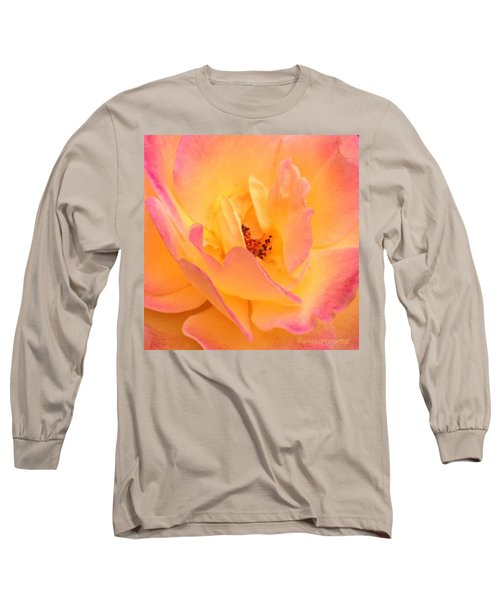 Peach Parfait  Long Sleeve T-Shirt
