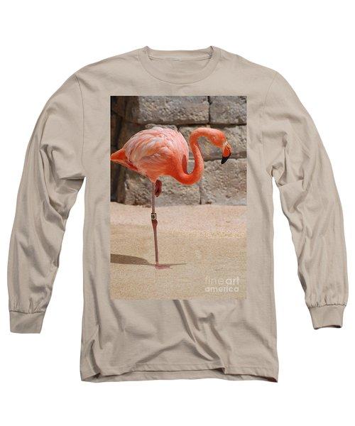 Perfect Pink Flamingo Long Sleeve T-Shirt by DejaVu Designs