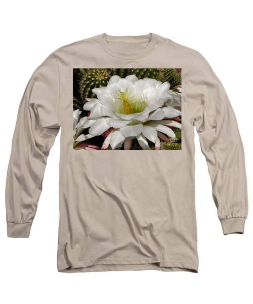 Long Sleeve T-Shirt featuring the photograph Petals And Thorns by Deb Halloran