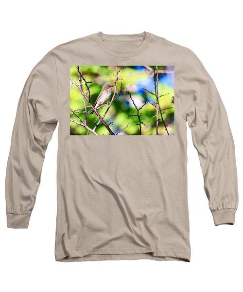 Pine Warbler Long Sleeve T-Shirt
