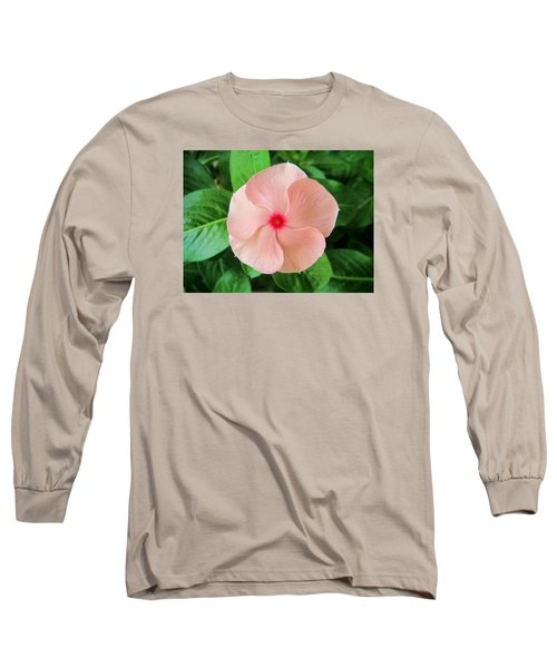 Pink Perfection Long Sleeve T-Shirt by Deborah Lacoste