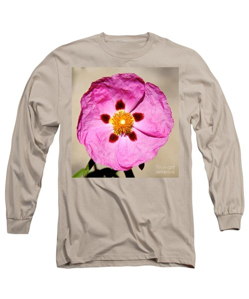 Pink Rock Rose Long Sleeve T-Shirt by Suzanne Oesterling