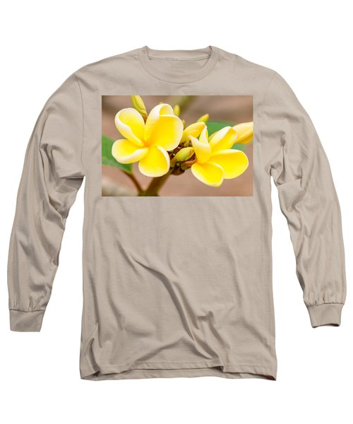 Plumerias Of Paradise 14 Long Sleeve T-Shirt